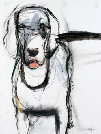 Good Dog, 1983